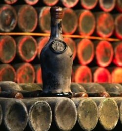 Jefferson's wine cellar