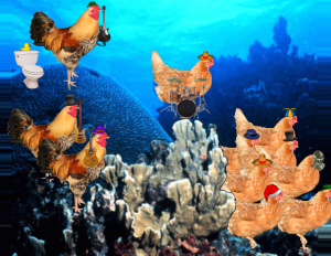Chicken_of_the_sea