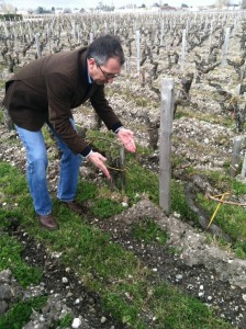 Duroux getting all biodynamicky.
