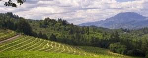 Spring Mountain District