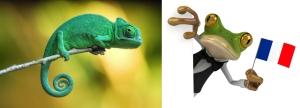 Clipboard frog