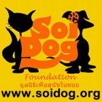 Soi-Dog-Foundation-TH6