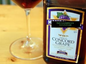 manischewitz_wine