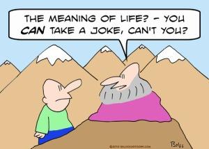 can_take_joke_guru__meaning_life_1016235