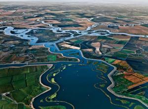 San Joaquin/Sacramento River Delt
