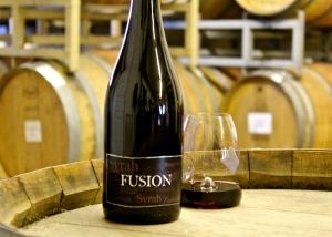 fusion 2009